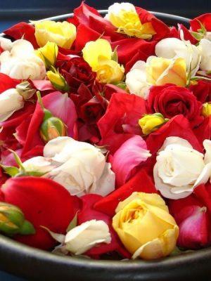 Rose & Sandalwood Essential Oil Blend