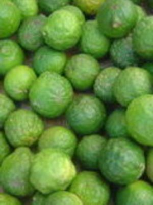 Lime 100% Pure Essential Oil 10ml