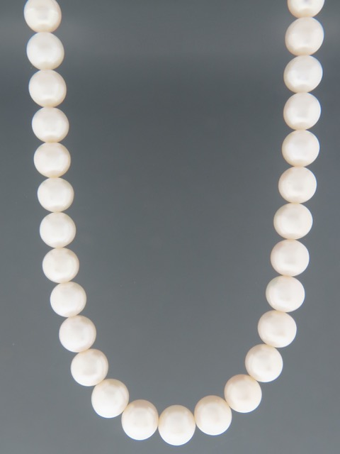 11mm Pearl Necklace - Gold Clasp - YW11N