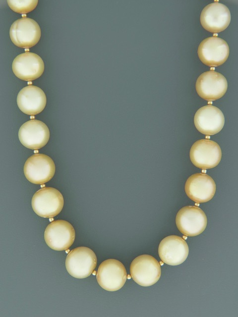 11mm Champagne Pacific Pearl Necklace with Gold beads - Y016